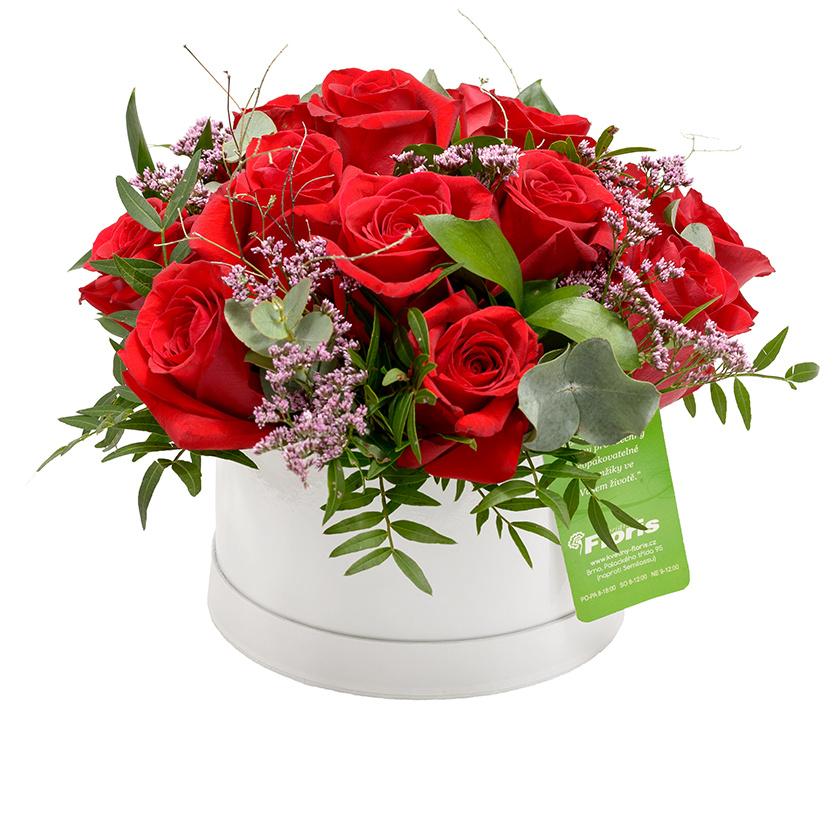 Flower box růže se zelení - Brno
