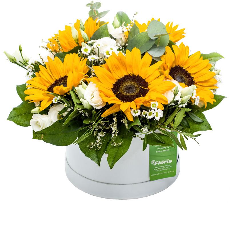 Flower box slunečnice - Letní - Brno