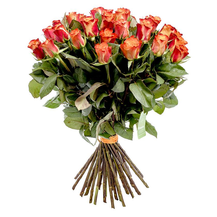 Kytice oranžových růží - Brno