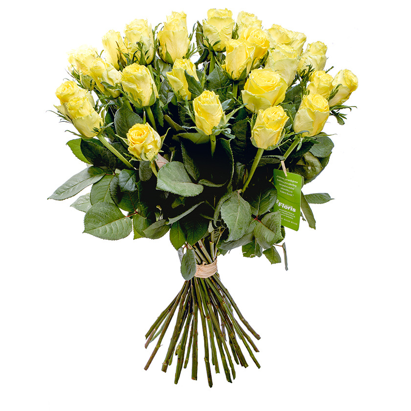 Bouquet of yellow roses - Brno