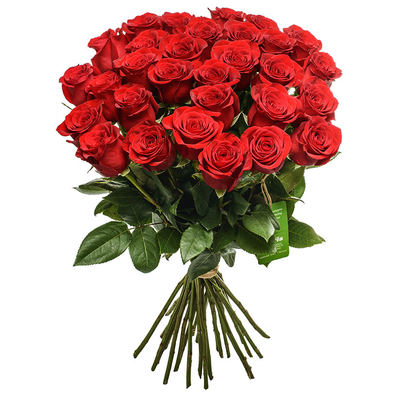 Bouquet of red roses - Brno