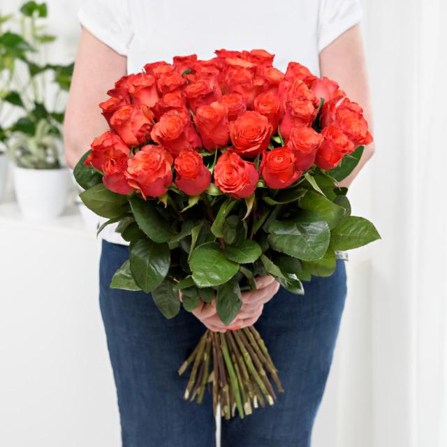 Kytice růží v Brně