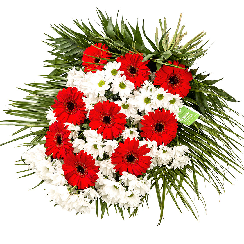 Smuteční kytice vázaná gerbery - Brno