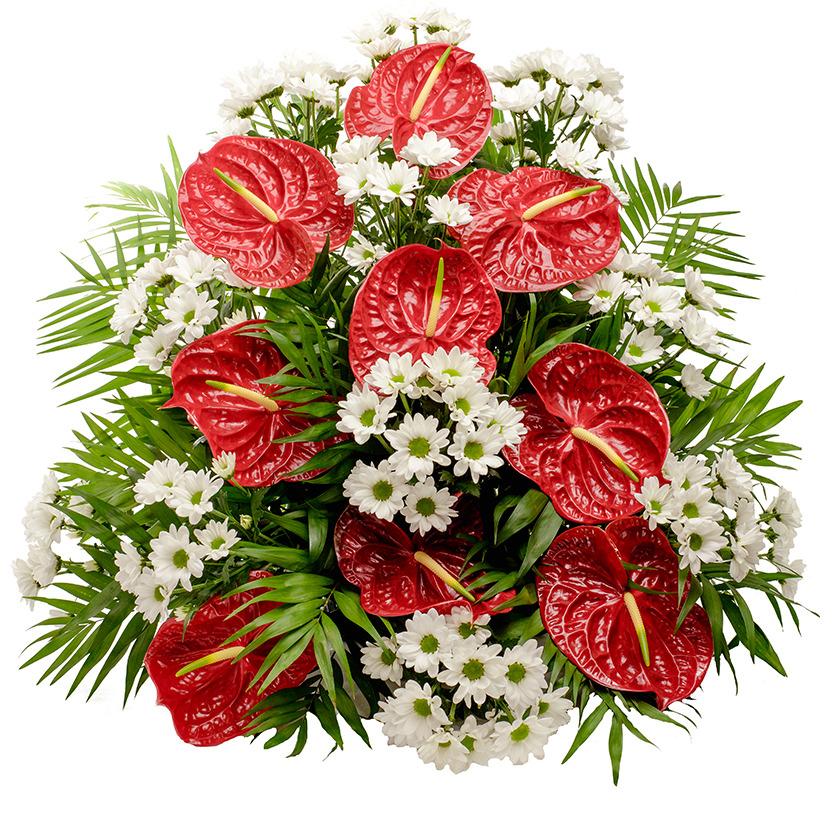 Smuteční jehlan anturie chryzantémy
