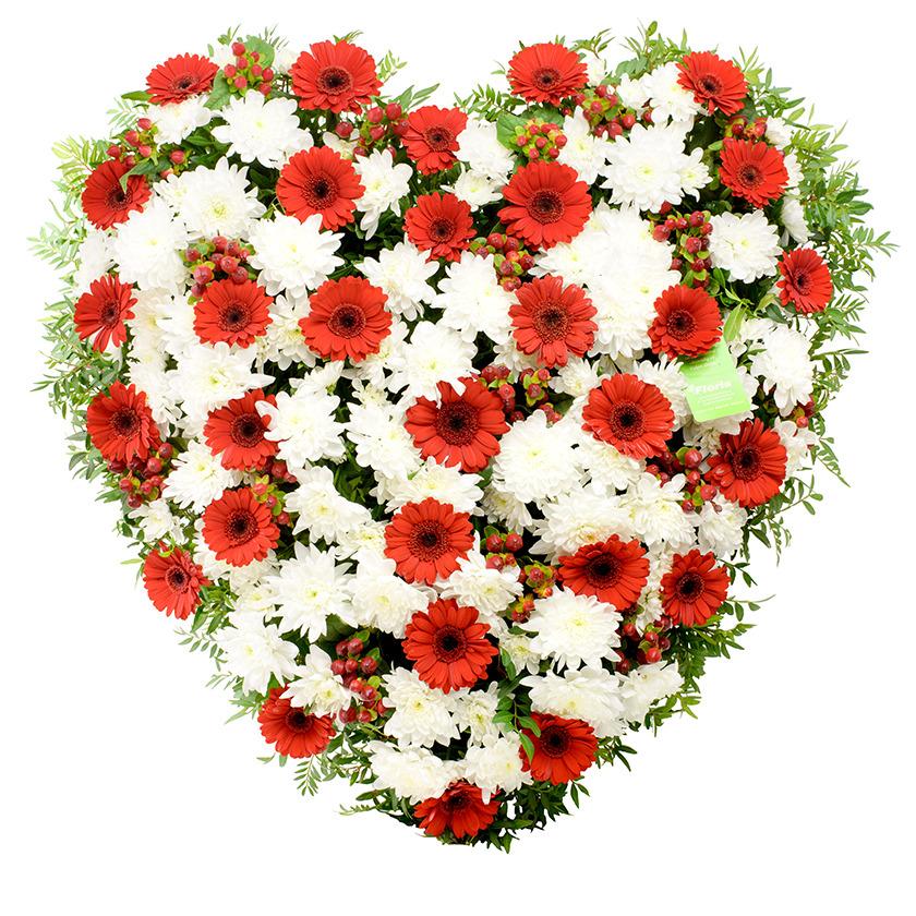 Smuteční srdce gerberky chryzantéma - Brno